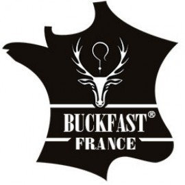 Essaims sur cadres hivernés Buckfast®